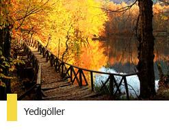 bolu-yedigoller