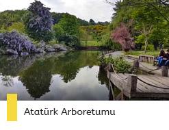istanbul-arboretum